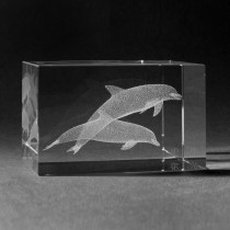 3D Laserglas Tiere - Delfine in 3D Glas gelasert