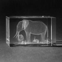 3D Lasergravur Tiere - Elefant mit Baby in 3D Glas