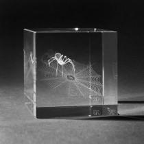 3D Lasergravur Spinnwebe in Glaswürfel