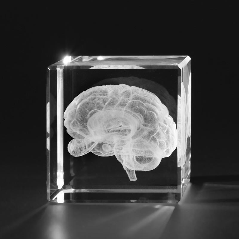 3D Anatomie – Menschliches Gehirn mit Augen in Kristallglas gelasert