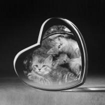 3D Kristallherz mit 2D Laserbild Katzenbabys gelasert