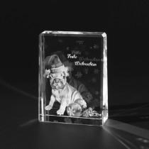 2D Laserbild, Foto Bulldogge in Glas gelasert. Bild im Glasaufsteller