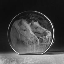 Glasfoto 2D Herz aus Kristallglas mit Motiv Pferde
