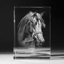 2D Glasfoto, Laserbild vom Foto in Kristall Glas, Bildaufsteller groß. 3D Crystal Tierportrait
