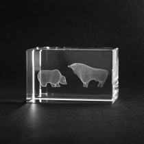 3D Lasgravur in Glas. Bulle und Bär