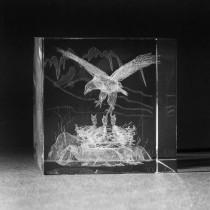 3D Laserglas. Tiere - Adlernest in 3D Glas graviert