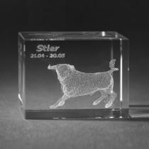 3D Crystal Motiv Sternzeichen Stier in Glas gelasert