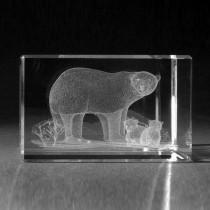 3D Lasergravur, Tiere - Eisbär in 3D Laserglas graviert