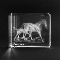 3D Glas Motiv Tiere. Pferd mit Fohlen in Kristallglas gelasert