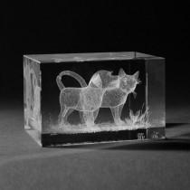 3D Laserglas. 3D Hund und Katze in Kristall Glas gelasert