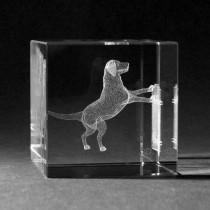 3D Glas mit Lasergravur Hund am Zaun by 3D Crystal