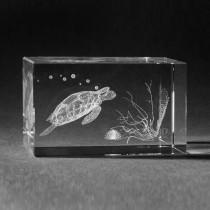 3D Laserglas. Tiere - Schildkröte in 3D Glas graviert
