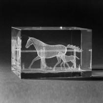 3D Lasergravur , Pferd mit Fohlen in 3D Kristall gelasert