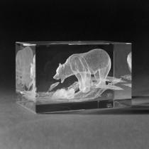3D Lasergravur Bär beim Fischfang in Glas by 3D Kristall