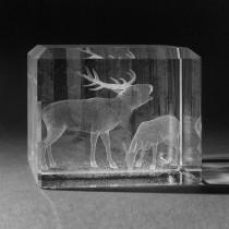 3D Laserglas. Tiere - Hirsch in 3D Glas graviert