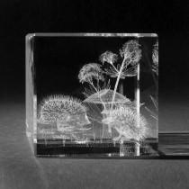 3D Laserglas mit Motiv Zwei Igel, by 3D Crystal