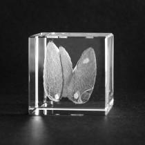 3D Glas anatomisches Modell: Schilddrüse