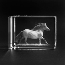 3D Glas Pony, Shetlandpony dreidimensional in Glas. Die Geschenkidee