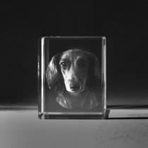 3D Laserbild. Hund vom Foto in Glas 543 gelasert. 3D Crystal Ihr Bid als dreidimensionales Portrait