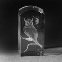 3D Glas mit Lasergravur. Eule in 3D Kristall gelasert