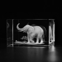 3D Elefant in Glas gelasert. 3D Crystal Kristallglas Motiv Tiere