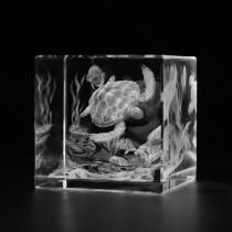 3D Schildkröte unter Wasser in Glaswuerfel gelasert. 3D Crystal Glas Motive Tiere