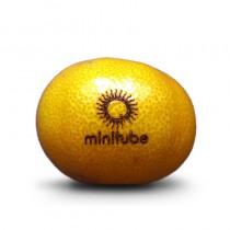 Logo Obst, Gravierte Promotion Mandarine