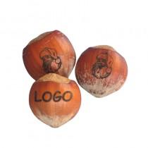 Gravierte Nüsse. Wunschmotiv oder Logo auf Haselnüsse gelasert